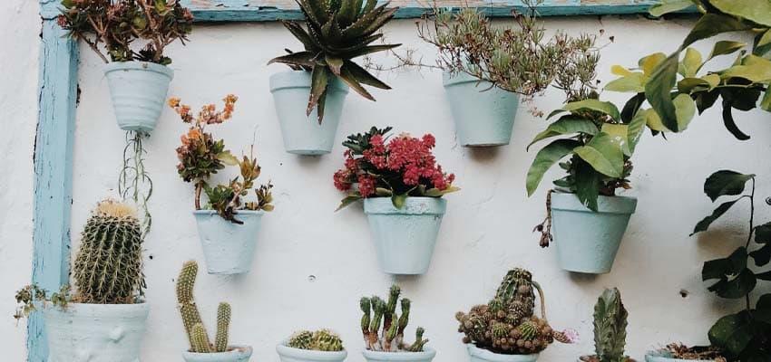 activitas - vivienda asequible - decorar jardin - 0