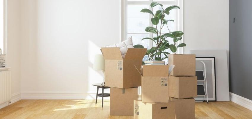casa-nueva-mudanza-activitas